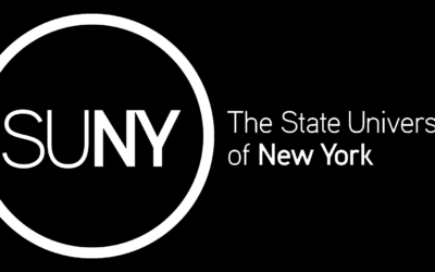 Board Chair Dr. Arden Henley Published in a State University of New York (SUNY) collection